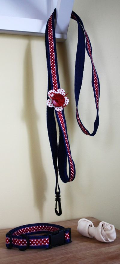 Project-sarah Jillibean Soup Dog Leash and Collar