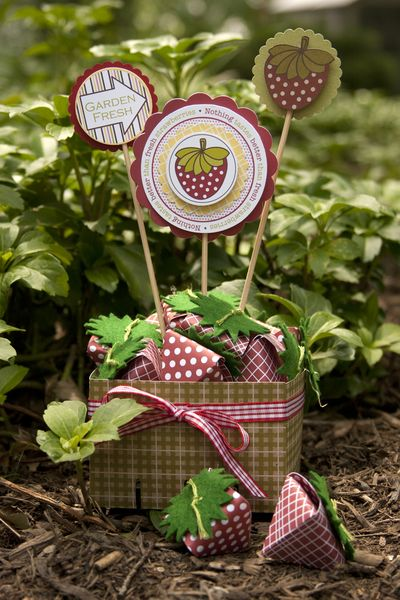 Project-Laina-StawberryBasket