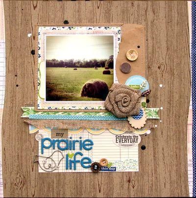 Prairie life maya road-1