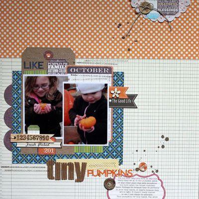 LO-Mel-Tiny Pumpkins