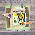 Sheri_feypel_mad_scientist_layout