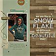 Summer-JBS-Snowflake