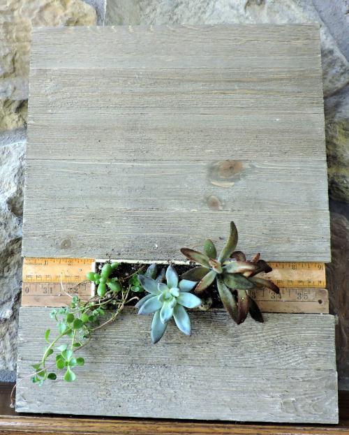 Living Wall Plank-Jen