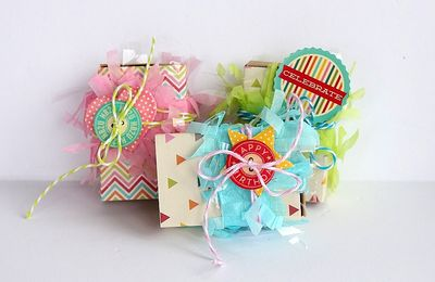 Treat boxes by Sarah Webb