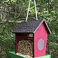 Bird House _ Kristine Davidson