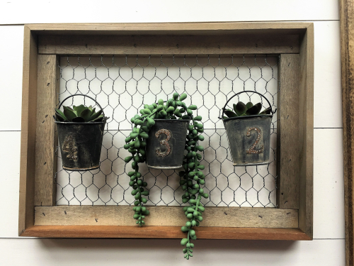 Patty-Succulent Wall Planter 1