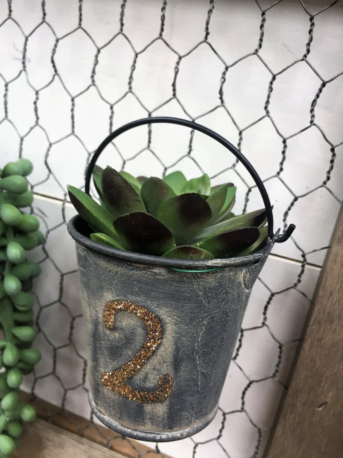 Patty-Succulent Wall Planter Detail