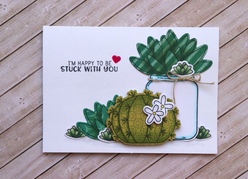 JillibeanSoup_JaclynRench_ClearStamps&Dies_Succulents_JB1558_February2018