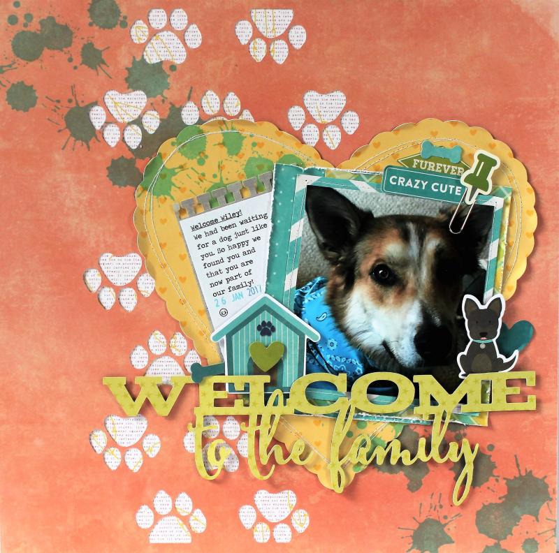 Welcome Wiley LO Pfolchert