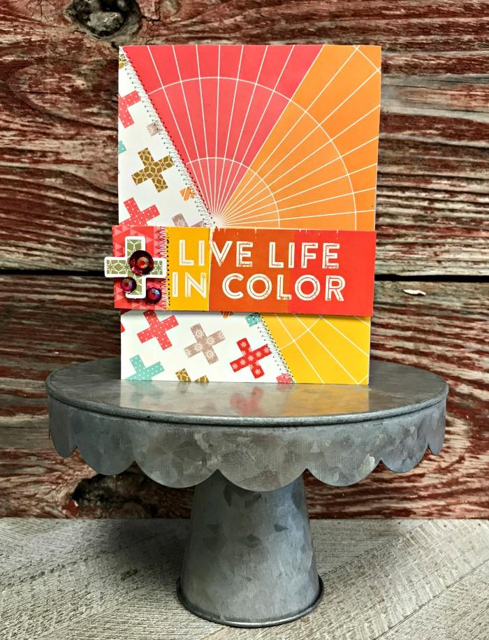 Jillibean-Soup-Patty-Folchert-Shades of Color-Flashy-Tint-JB1395-October-2017