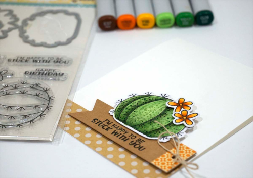Succulent Shaker Stamp Die Set Card.  Jillibean Soup cardmaking.  How to use a stamp and die set.  #stamping #jillibeansoup #stampanddieset #scrapbooker