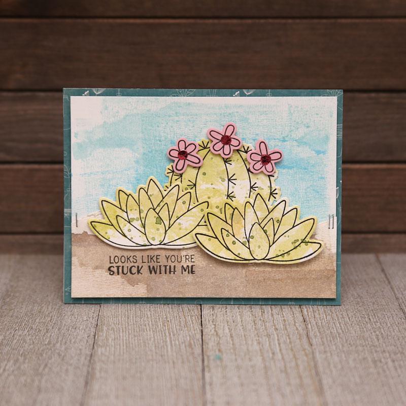 Jillibean-Soup-Summer-Fullerton-Shape-Shaker-Succulents-JB1558-Card-May-2018