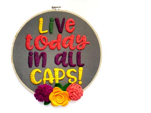 Jillibean-Soup-Kira-Ness-Felt-Flower-Embroidery-Hoop-JB1429-July-2018 (11)