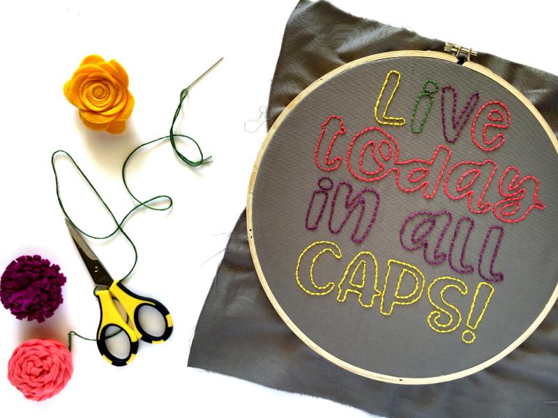 Jillibean-Soup-Kira-Ness-Felt-Flower-Embroidery-Hoop-JB1429-July-2018 (4)