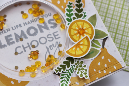 Shape shaker card using Jillibean Soups Spoonful of Soul patterned paper, Spoonful of Soul clear stamps, Lemonade clear stamps, Garden Harvest stamps, large circle shaker card and insert, and shaker fillers.  How to stamp on a shaker card.  Jillibean Soup cardmaking.  #jillibeansoup #cardmaking #shapeshaker #spoonfulofsoul #gardenharvest #largecircle #lemonade #stamping