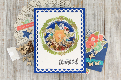 Shape shaker card made with Jillibean Soup's large circle card shaker and insert, Garden Harvest stamp set, and shaker fillers.  How to make a shape shaker card.  Jillibean Soup cardmaking.  #jillibeansoup #cardmaking #shapeshaker #stamping #gardenharvest #largecircle