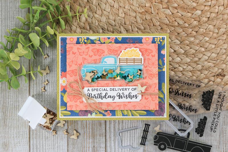 Birthday-Wishes-Card-Jillibean-Soup-A-Little-Pickup-Stamp-Set-Juliana-Michaels-01