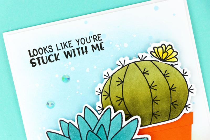 Cactus-Three