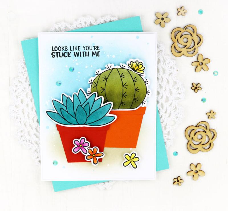 Cactus-One