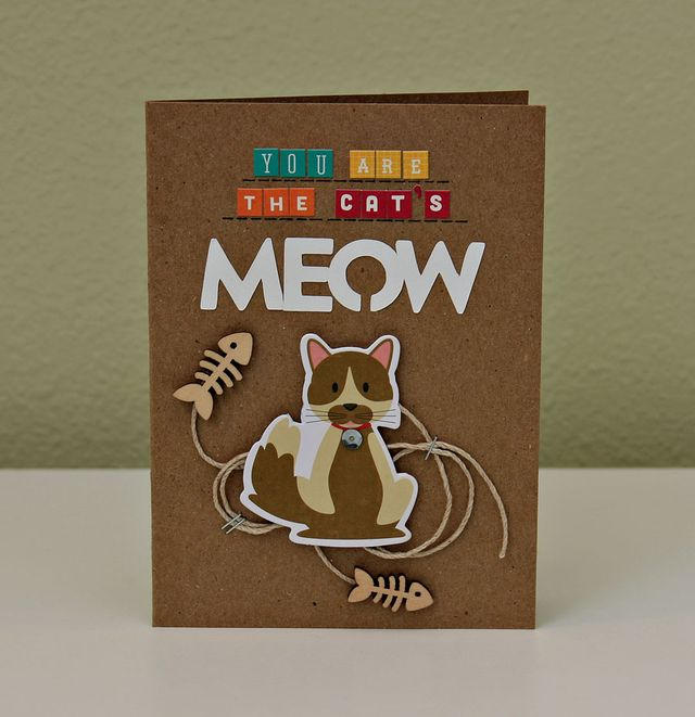 Summer-JBS-Meow-Card